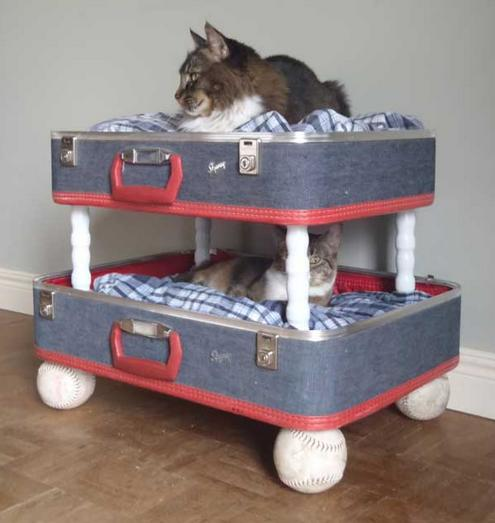 Mis gatitos manualidades para nuestras mascotas reciclando - Casa para gato ...