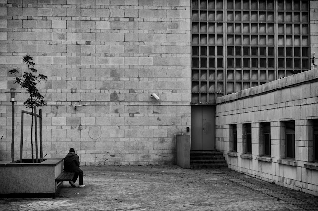 A figure sits on a bench alongside a tree in front of a concrete edifice