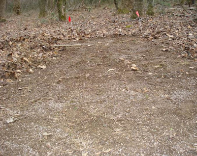 gypsum on ginseng seed bed area