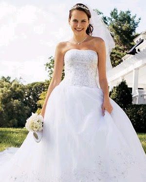 All About The Wedding Celebration Davids Bridal Ball Gowns Gowns