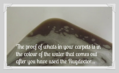 Rugdoctor, review, Rugdoctor carpet cleaner, carpet cleaning, dirt, dirt removal, clean home, spring clean, carpets,  results, dirt
