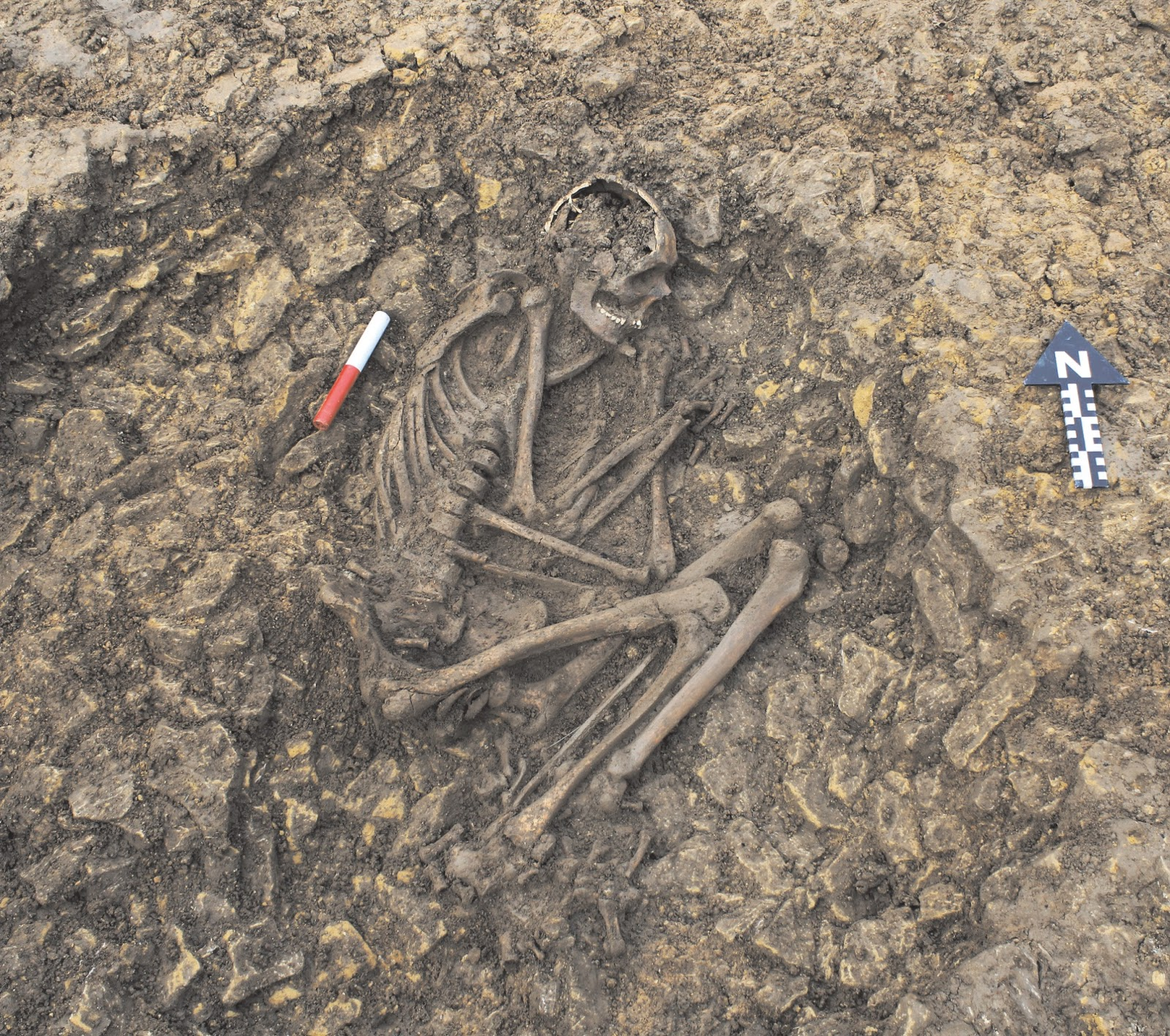 burial archaeology Vampires, criminals or slaves reinterpreting 'deviant  criminals or slaves reinterpreting 'deviant burials' in early  essays in burial archaeology in.