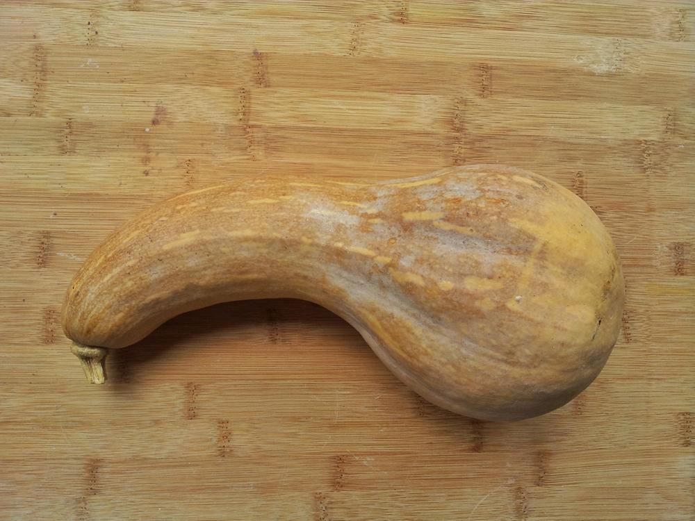 how to grow butternut pumpkin