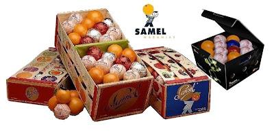 naranjas de valencia. regalos de navidad