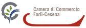 Forlì-Cesena - Il territorio in missione a Pechino