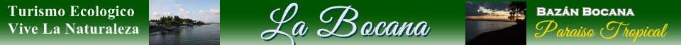 Bazán Bocana