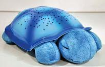 ışıklı kaplumbağa