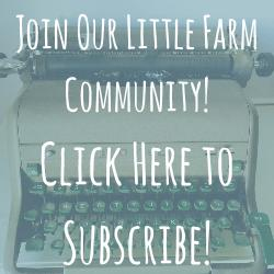 Subscribe to Our E-News!