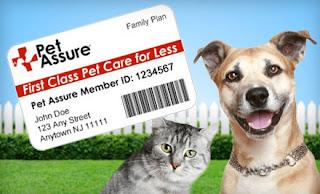 Animal Health Insurance