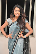 Jyothi seth sizzling saree photos-thumbnail-12
