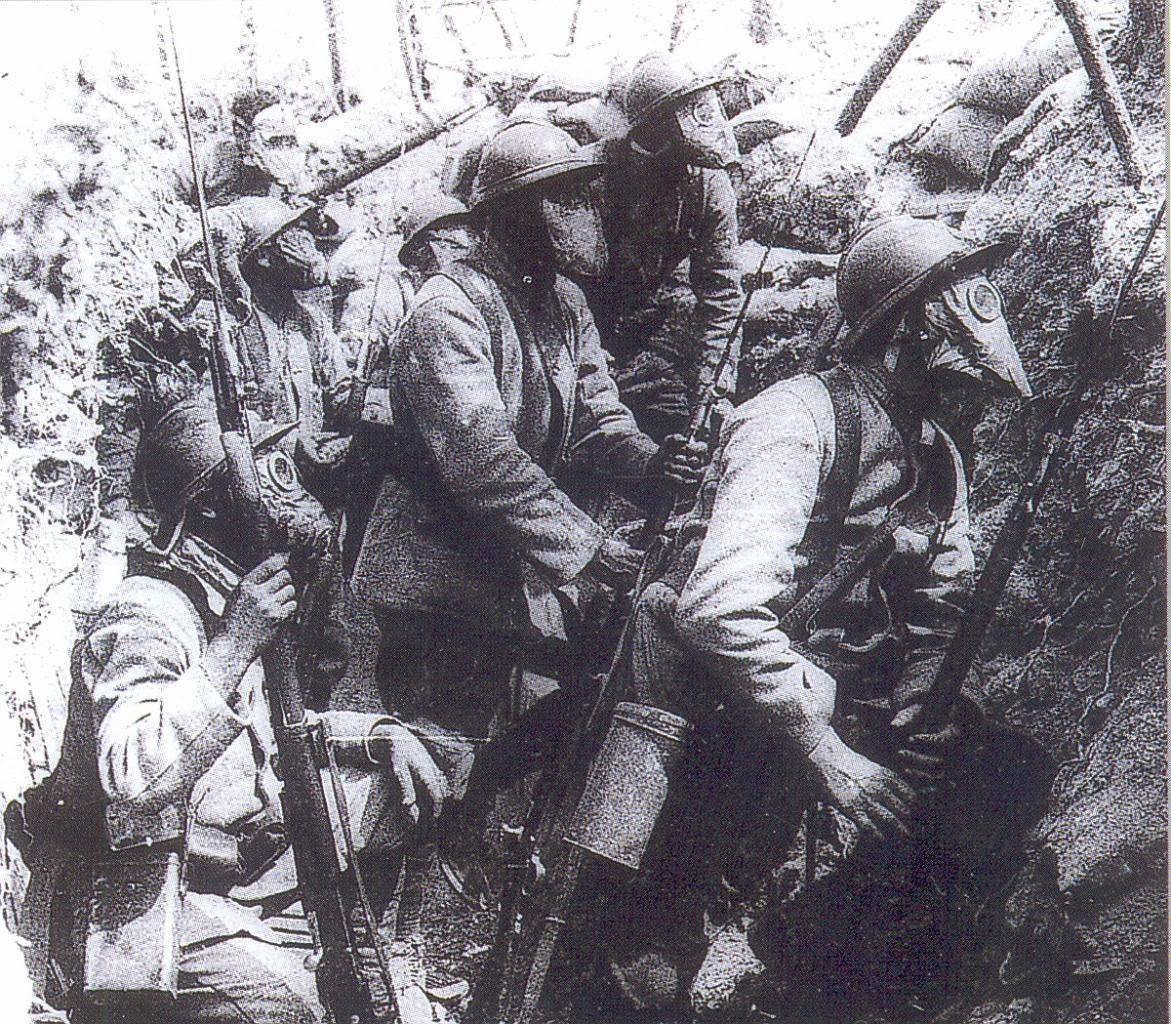 L 39 cho du champ de bataille la d fensive l 39 h ritage for Dans jeannot et colin l auteur combat