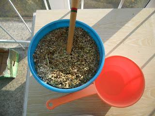 отделение семян
