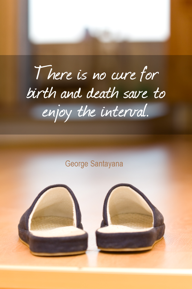 visual quote - image quotation for LIFE - There is no cure for birth and death save to enjoy the interval. - George Santayana