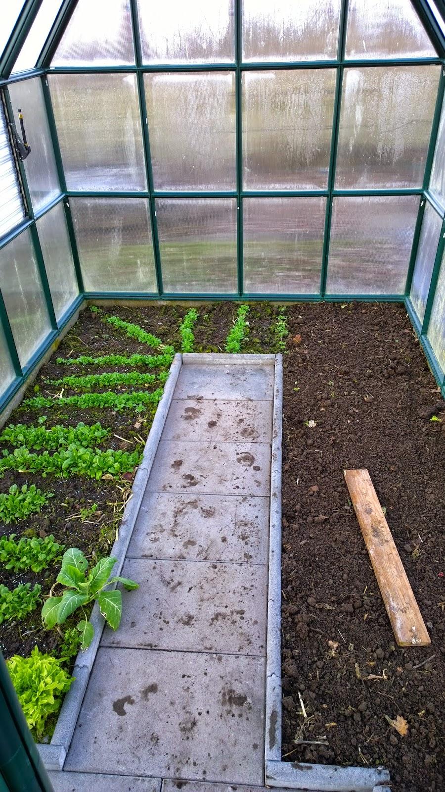 Achimsgarten Der Selbstversorger Und Garten Blog
