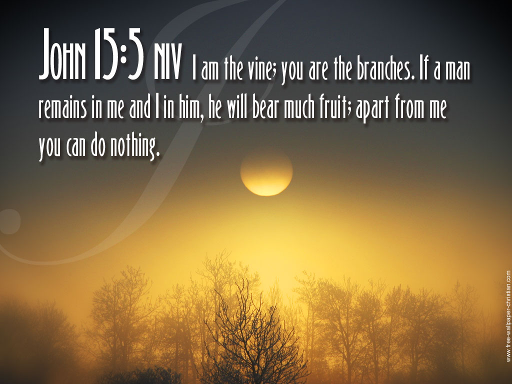 Quotes From The Bible About Life Premier Logo Bible Quotes