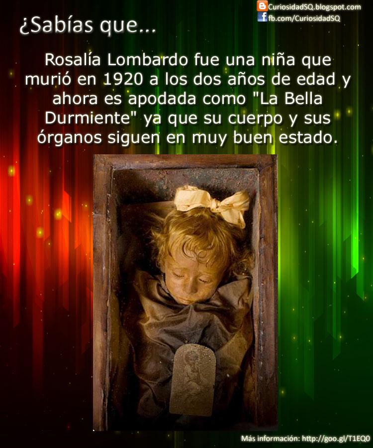 Rosalia lombardo 2012