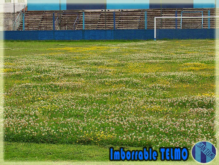 FLASHES IMBORRABLES - LA ISLA FLORECIDA (2004)