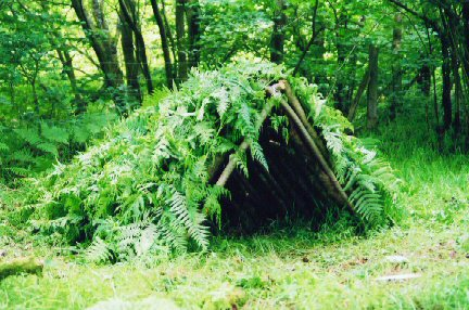 How to Build Survival Shelters in the Woods