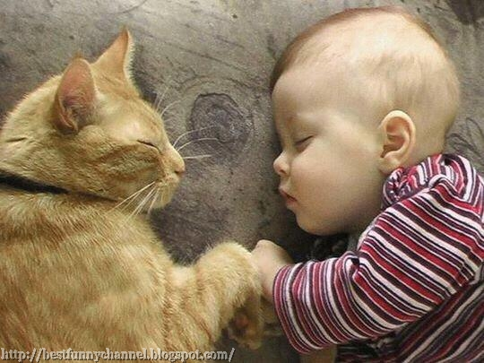 Baby and cat sleeping.
