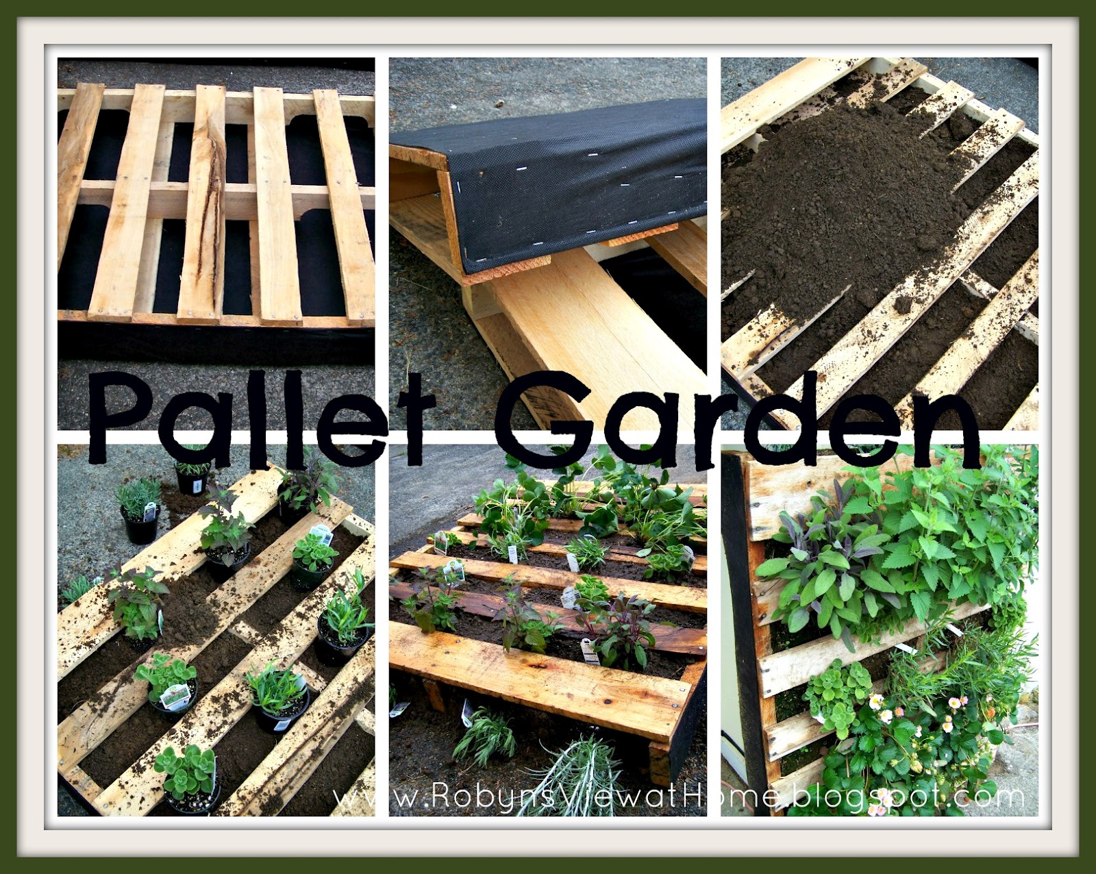 how does your garden grow plus how to make a pallet