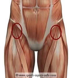 hip flexor ache sitting an excessive amount of