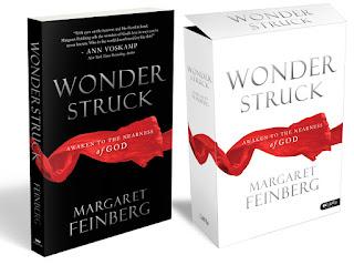 Margaret Feinberg Wonderstruck