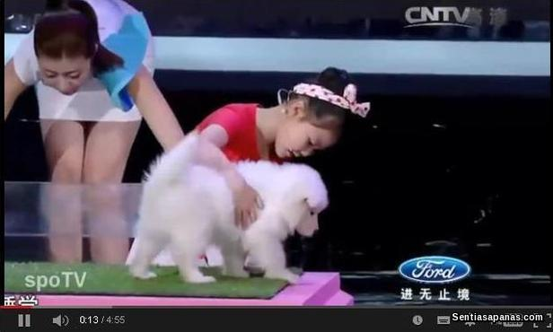 Chinese Girl Can Hypnotize Animals