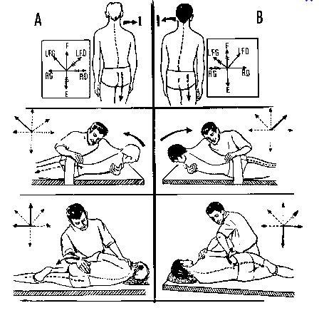 Top un médecin du sport vous informe: Les lombalgies. EW75