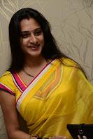 Surekha Vani Yellow Saree Hot photos at Yevadu movie Press Meet15