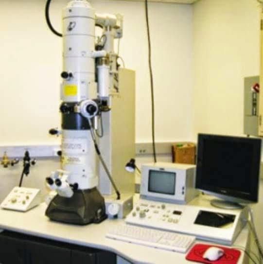 Macam-Macam Mikroskop