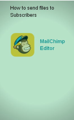 send e-books to subscriber on mailchimp