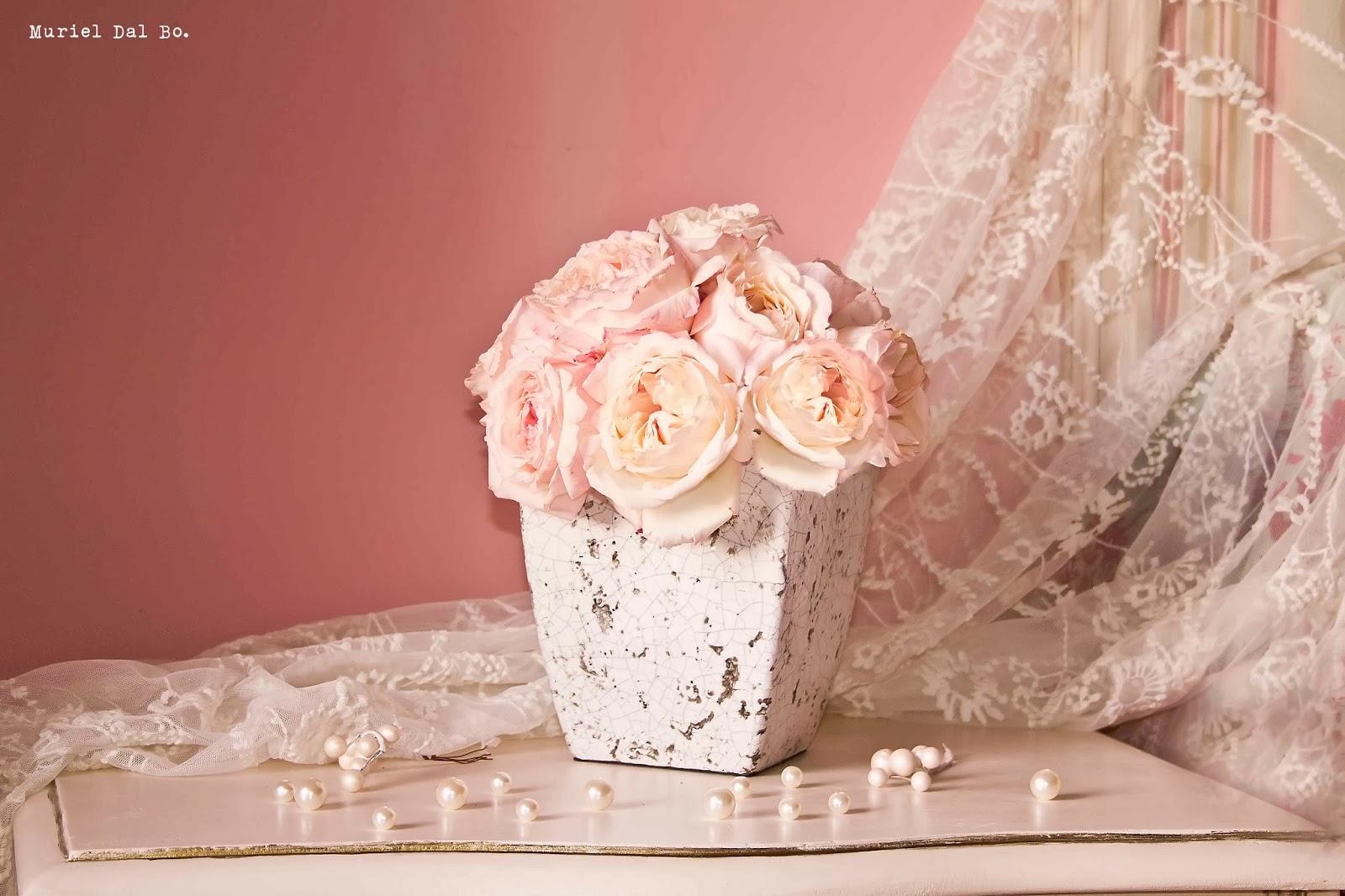 Imagenes de flores que brillen ImagenesHIP com - Imagenes De Flores Que Brillen