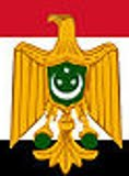 Egyptian Revolutionary FLAG