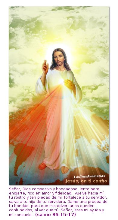 divina misericordia jesus en ti confio con salmo de la biblia del vaticano