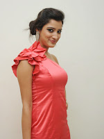 Richa Panai photos at Basthi audio-cover-photo