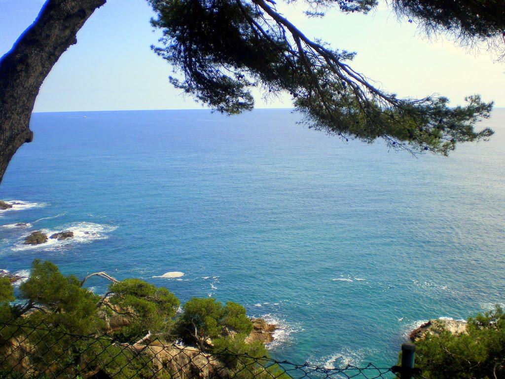 Španija  Floret-del-mar-12