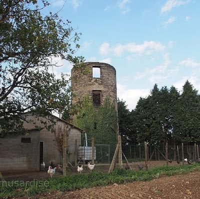 Moulin de Tru la chapelle de brain 35