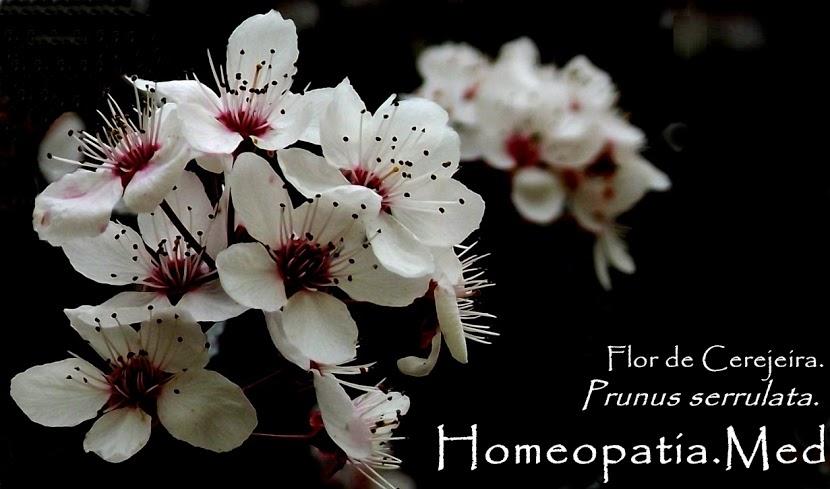 Homeopatia.Med.