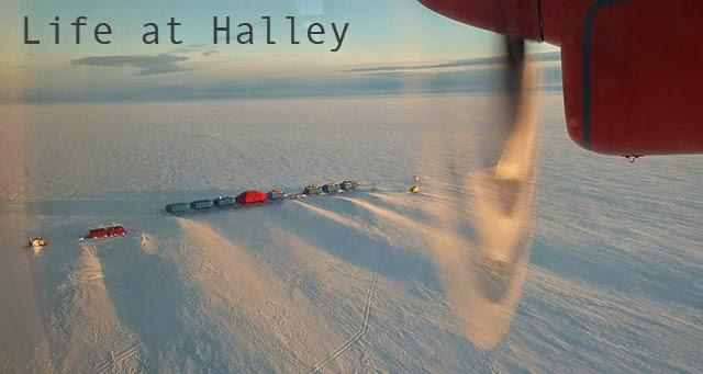 Life at Halley
