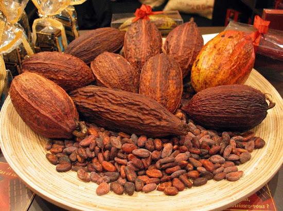 Que significa soñar con cacao