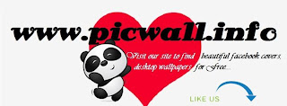Picwall Facebook Fan Page Coer