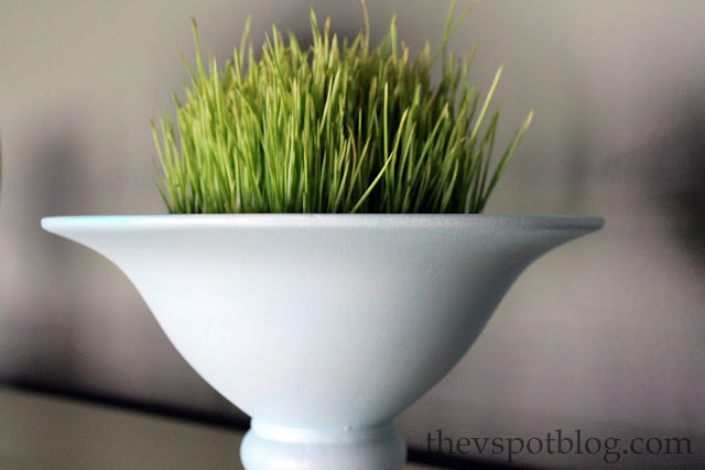 wheat grass, pedestal bowl, urn, decor, houseplant, spring