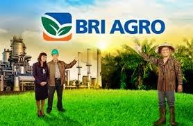 http://www.lokerbaru.info/2015/04/lowongan-kerja-terbaru-bank-bri-agro.html