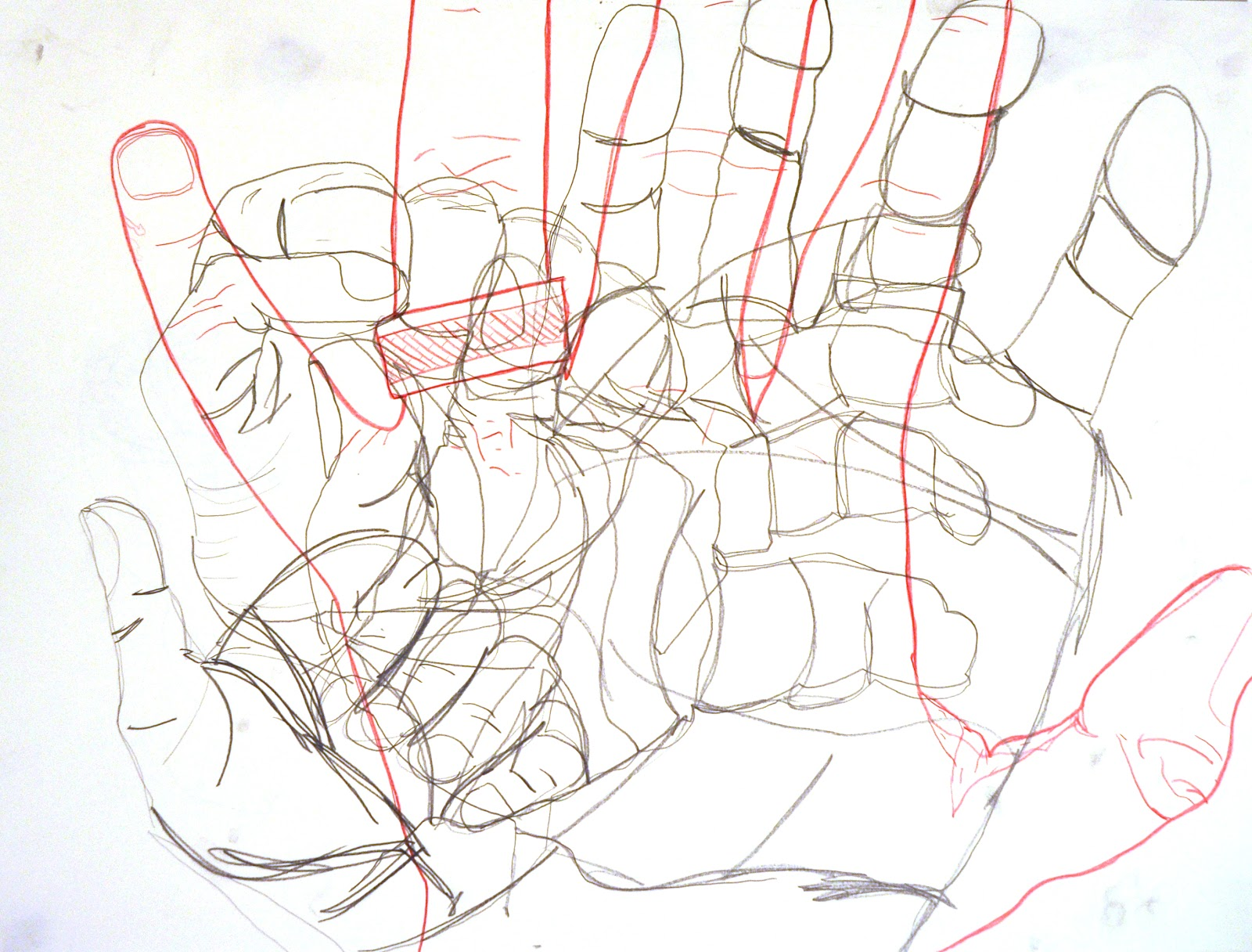 Blind Contour Line Drawing Hand : Arts foundations drawing fall homework contour