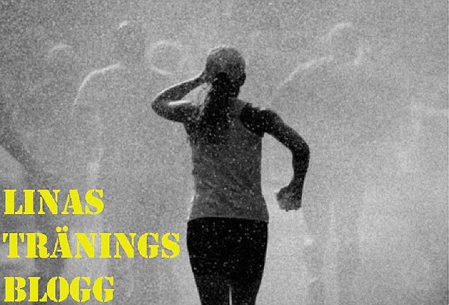 Linas Tränings Blogg