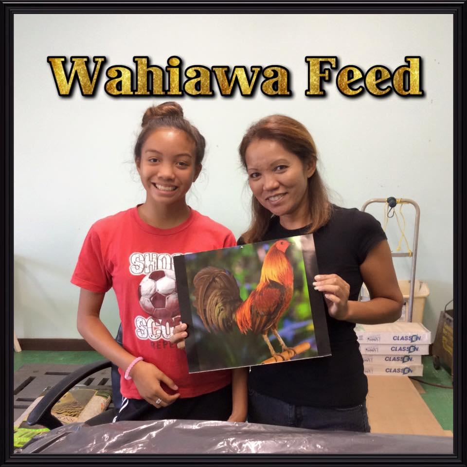 New feed store in wahiawa for Waimanalo feed supply