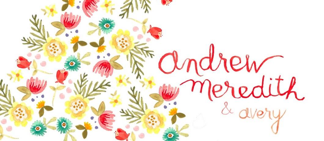 andrew + meredith