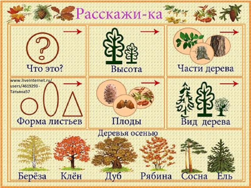 Диктанты по русскому языку 1 класс