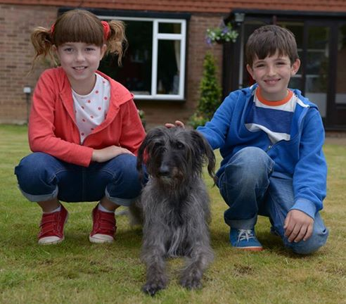 Northumberland Mam: Topsy & Tim made me cry!