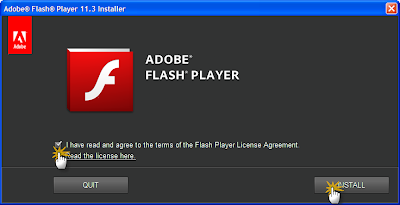 Adobe Flash Player 11.3.300.257 Final
